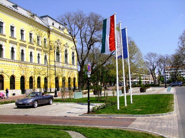 Hodmezovasarhely Hungary  city photos : Hodmezovasarhely flags with a convertible in front of Ginkgo Sas